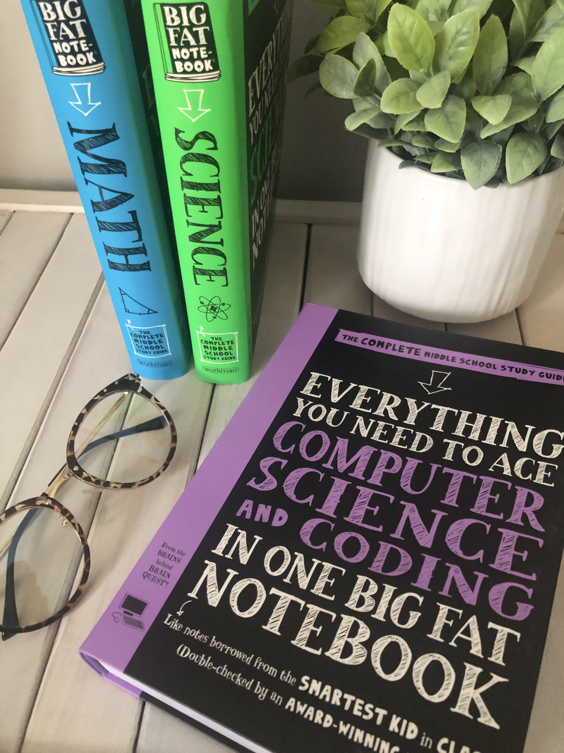 Adding Big Fat Notebooks to my Classroom Library