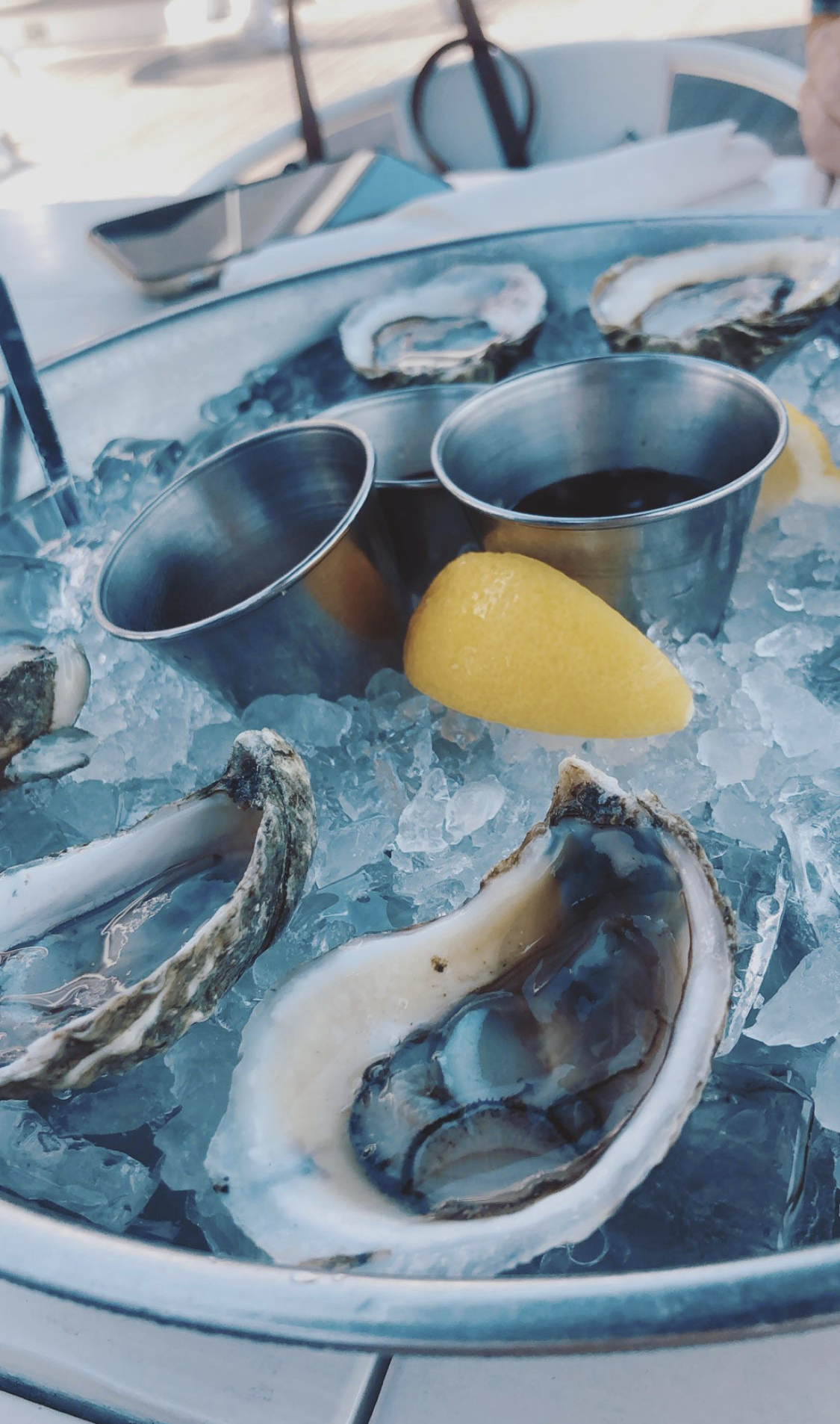 Red36Oysters